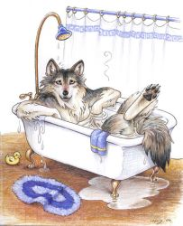 Wolf Tub by Dustmeat