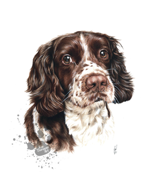 Spud the Spaniel by RozThompsonArt