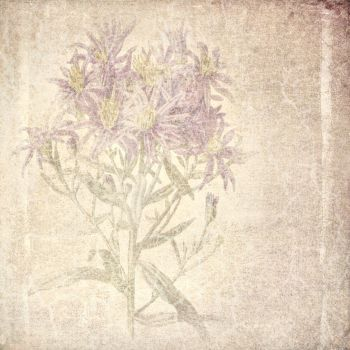 FREE TEXTURE VINTAGE FLOWERS #3 by My-AngelWings