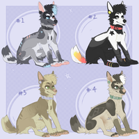auction adopt batch (closed) by mvse