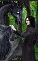 Snape's toy by Isinar
