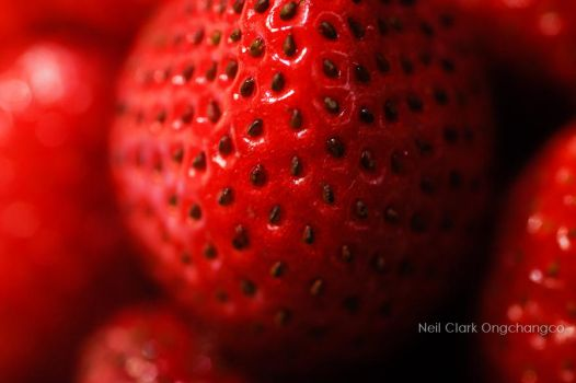 Strawberry Upclose by neilclark