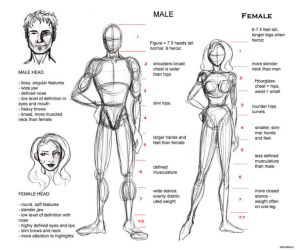 Proportion Guide by AlenaLane