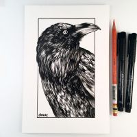 Inktober Day 5 - Raven by D-MAC