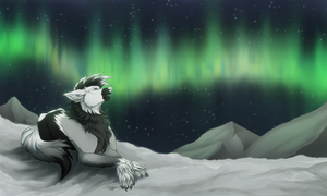 .:YCH:. Polar night by Arankay