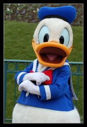 Donald duck by Prince-Photography