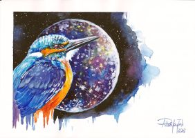 Kingfisher and Callisto by AnnaP-Artwork