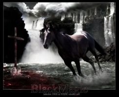 Black Magic by inkolor