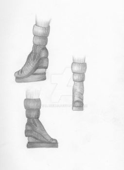 020 Shoe Concept by Tealabells
