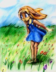 Penny in the Grass by Fragraham