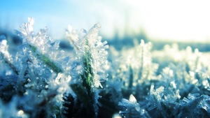 Winter Frost III by RockLou