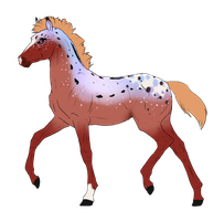 N3499 Padro Foal Design for DarkestNation by casinuba
