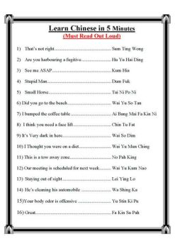Learn Chinese the Easy Way by queenofdogs