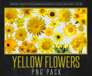 Yellow Flowers   PNG by sweetpoisonresources