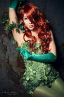 DC - Poison Ivy II by MissNoblesse