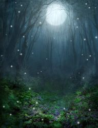 Magical Forest by PatrickMcEvoy
