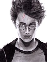 Harry Potter by happylilsquirrel