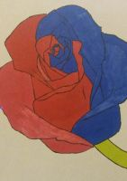 A red and blue rose by MosquitoDrawsNStuff