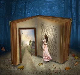 The story book by DoaaHammam