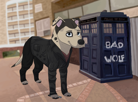 Ninth Dogtor Woof for Chelsea-the-tomboy by Starrypoke