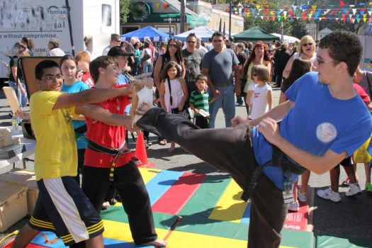 Karate Day at Street Fair 9 by quietstorm2