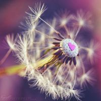 Seed of Love.. by Fwirll