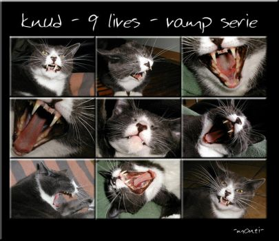 knud -9 lives- vamp serie by monti