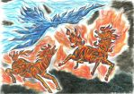 Ice and Fire by kxeron