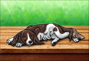 Summer Snooze by Bafa