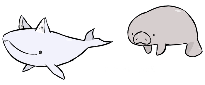 cat whale and manatee by Eiocia