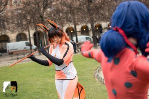 Let's fight ! Ladybug vs Volpina ! by Aure-magik