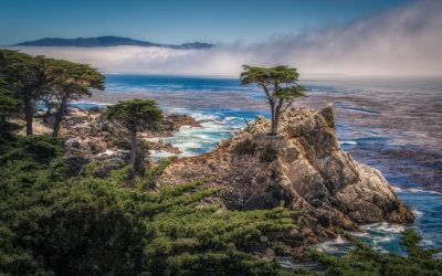 17-Mile Drive, Road in California by ROGUE-RATTLESNAKE