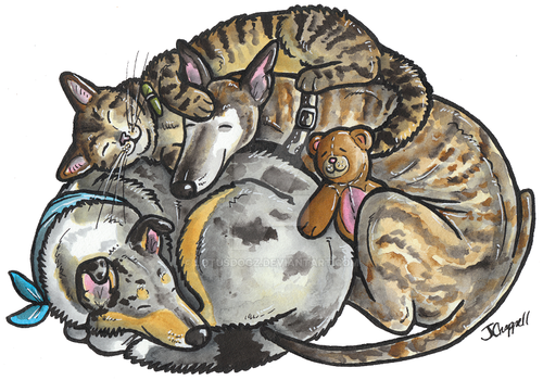 Sleeping dogs and cat (commission)