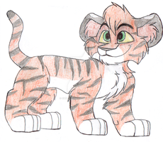 Tiger Cubbie by Charlie-Breen