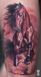 Colored Horse Tattoo by Remistattoo