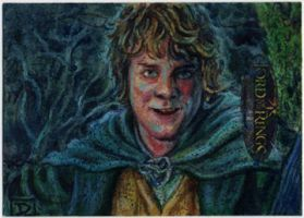 Lord of the Rings - Merry in Fangorn Forest by DavidRabbitte