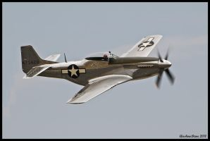 Planes of Fame 26 by AirshowDave