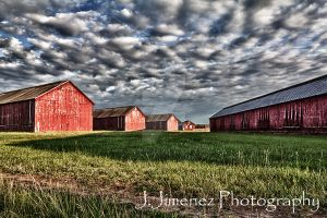 CT Valley Tobacco Barns II by JJLouis