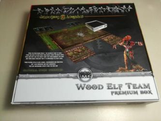 Iron Golems Wood Elf team cover back by LANZAestudio