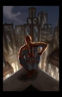 Spiderman on the Rooftop by ErikVonLehmann