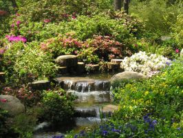 Garden and River by RipperBlackstaff