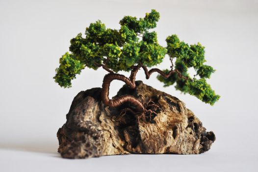 Green Bonsai by NoriAnum