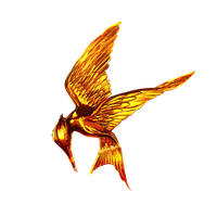 The Hunger Games Movie Logo (No ring or Arrow) by allheartsgoboom
