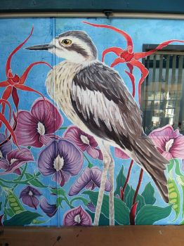 Mural For Sustainability - Bush Stone Curlew by TracieMacVean