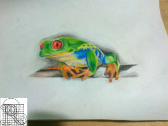 Frog,color pencil drawing by robiartimre