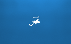 Wallpaper - Ubuntu GNOME 'Saucy Salamander' by PaoloRotolo