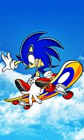 Sonic Skate Wallpaper by DJ7493