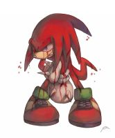 Knuckles by bluekomadori