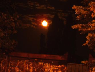 Full Red Moon 2 by ShellyWebsterBrutal