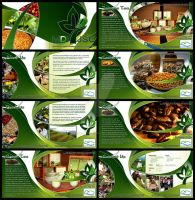 MDI Brochure by Unidentifiedname